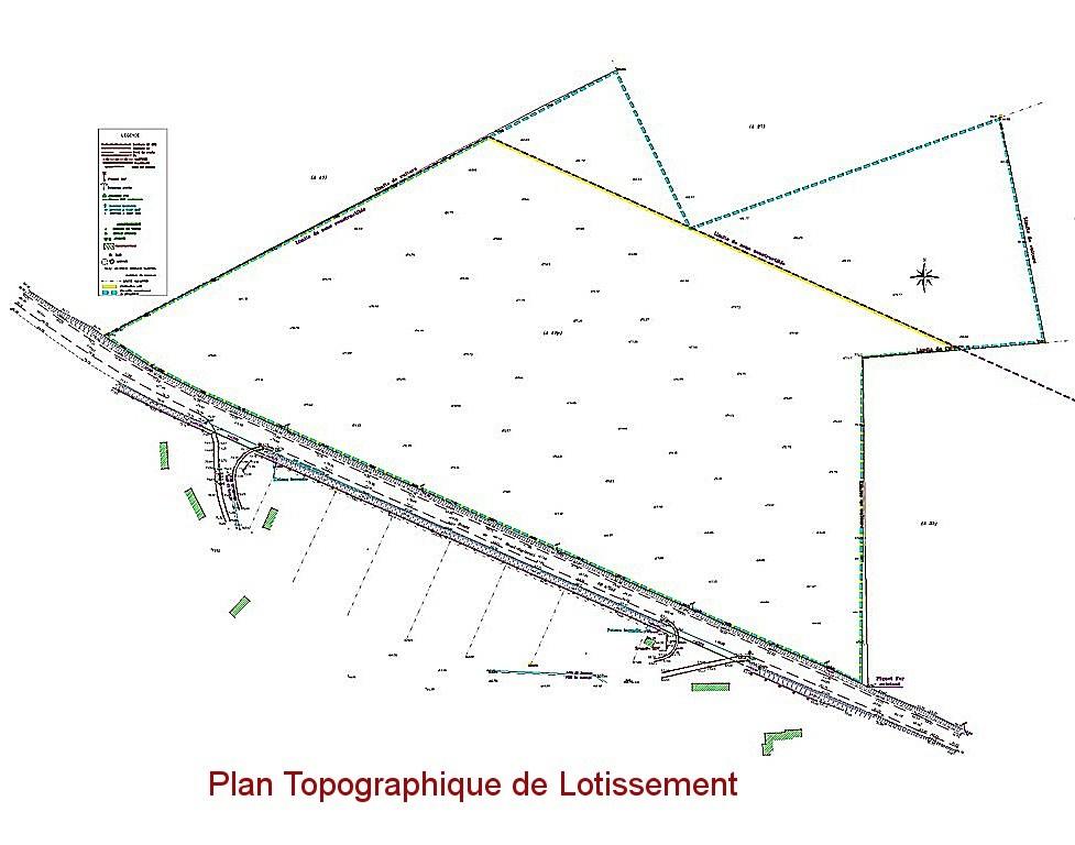 Plan de bornage terrain for Plan terrain